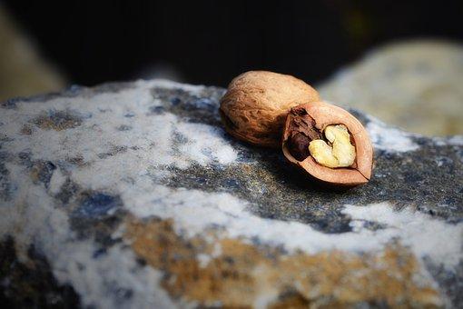 Hard Shell Soft Core, Walnut, Nut, Heart, Heart Nut