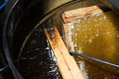 Honey Extraction, Sweet, Honey, Bee, Food, Tasty