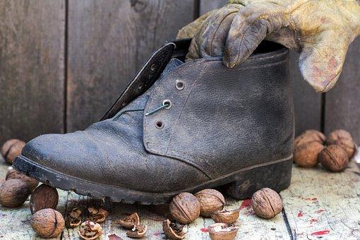 Shoe, Walnuts, Wood, Glove, Walnut Shells