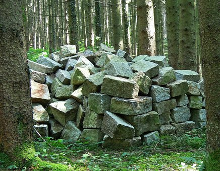 Storage, Stones, Forest, Trees, Nature, Garbage