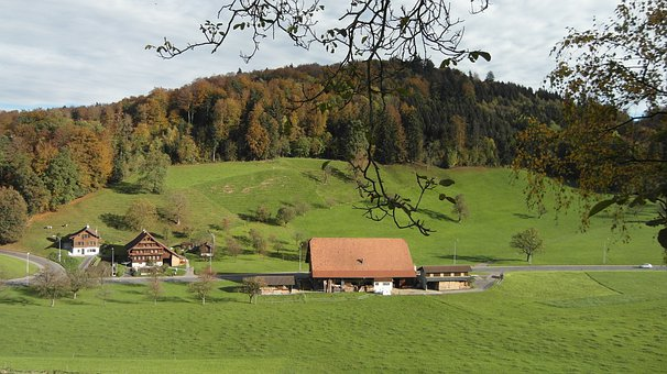 Farm, Agriculture, Landscape, Home, Trees, Forest, Horw