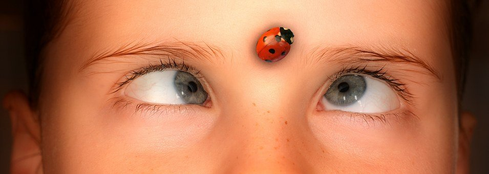 Eyes, Squint, Human, Person, Girl, Ladybug, Watch