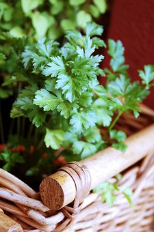 Parsley, Herbs, Aromatic Herbs, Aromatic, Nature, Plant