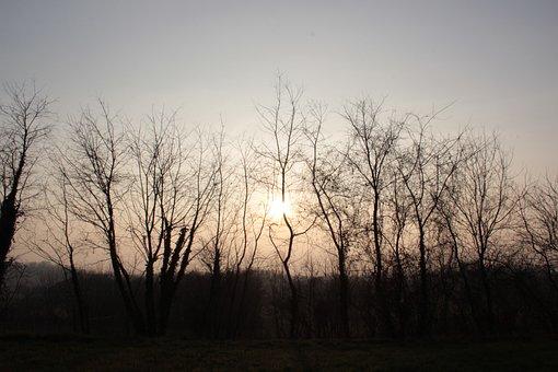 Winter Sunset, Sun, Sunset, Cold, Brianza, Nature