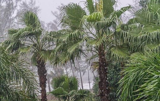 Phuket, Thailand, Monsoon, Tropical, Travel, Sea, Sky