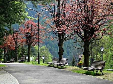 City Szczawnica, Pieniny, Poland, Tourism, Travel, Tour