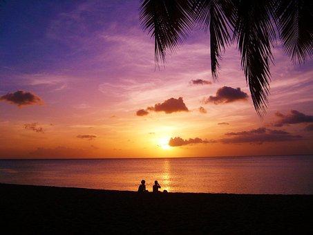 Sunset, Beach, Guadeloupe, Sea, Evening, Palm