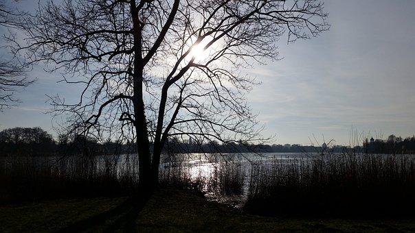 Germany, Potsdam, Holy Lake, Nature, Lake, Back Light