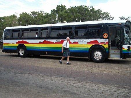 Bus, Vehicle, Tour Bus, Transport, Car, Transportation