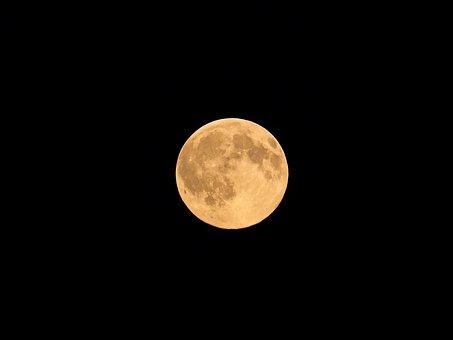 Moon, Macro, Evening Host, Earth Companion