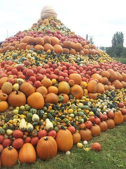 Pumpkins, Pumpkin, Pumpkin Pyramid, Autumn, Colorful