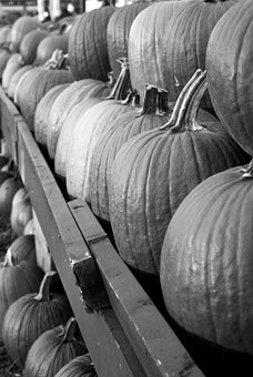 Pumpins, Fall, Black And White, Market, Fruit, Food