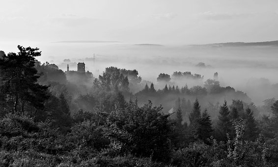 Fog, Morning, View, Landscape, Poland, Bolechowice