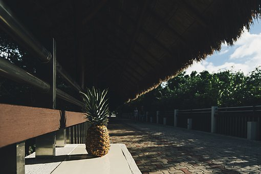 Daylight, Fruit, Outdoors, Pavement, People, Pineapple