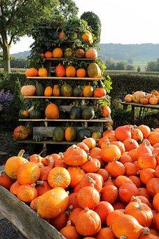 Pumpkin, Autumn, Sale, Gourd, Pyramid