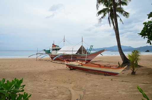 Palawan, Mangrove Jungle, Boat, Ocean, Sea, Beach