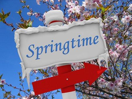Spring, Winter, Snow, Ice, Flowers, Bud, Arrow, Note
