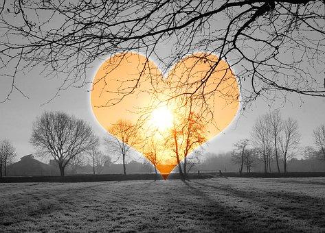 Heart, Love, Sunrise, Cold, Iced, Hoarfrost