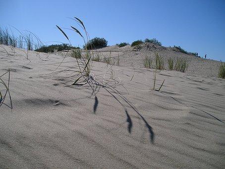 Dune, Lithuania, Kuršská Scythe