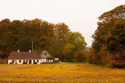 Denmark, Home, Afternoon, Nature, House, Exterior