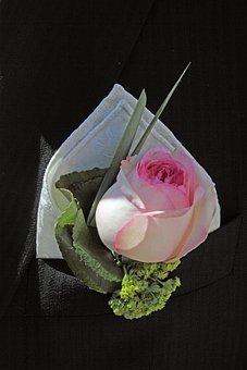 Wedding, Groom, Handkerchief, Rose