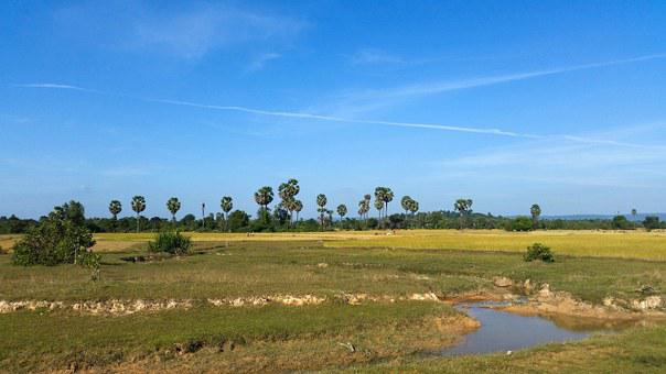 Cambodia, Asia, Siem Reap, Province, Landscape
