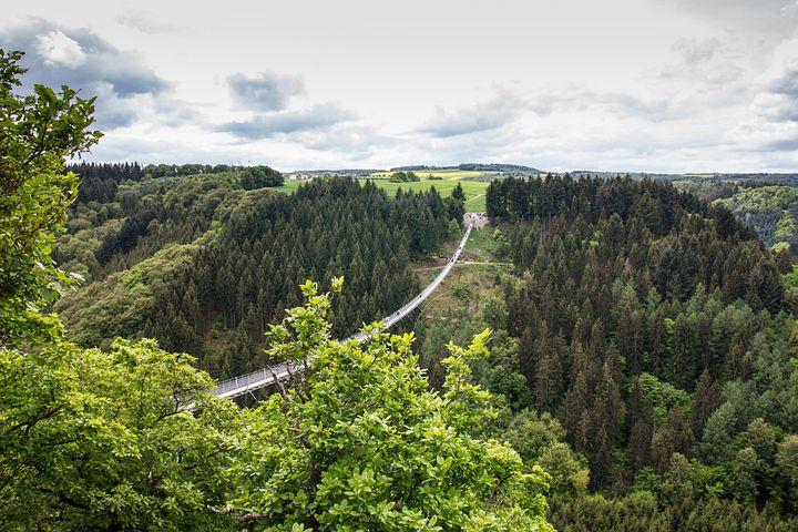 Bridge, Hanging Rope Bridge, Nature, Hiking, Height