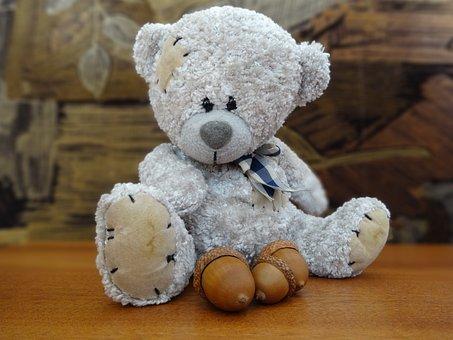 Teddy Bear, The Mascot, Plush Mascot, Cuddly, Fun