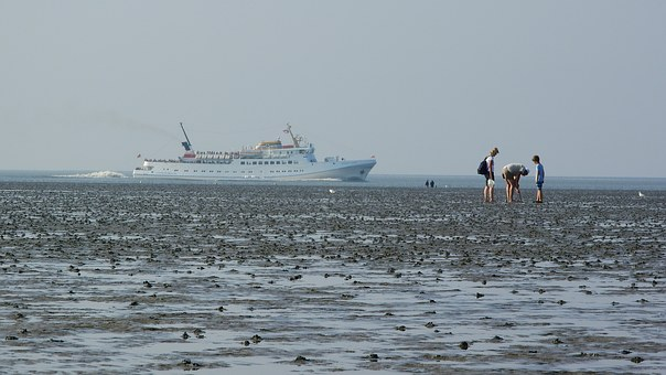 Beach, Sea, Ship, Sandy Beach, Holidays, North Sea