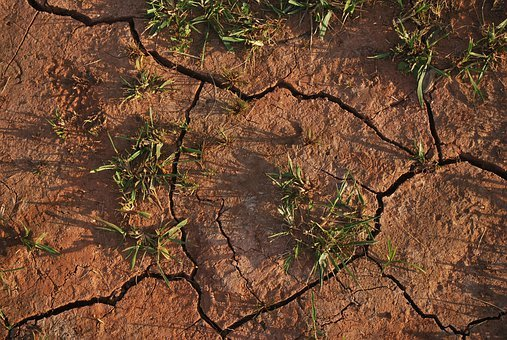 Soil, Land, Dry, Cracked, Drought, Grass