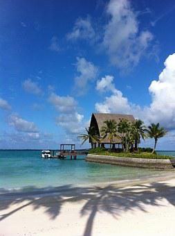 Holiday, Beach, Exotic, Water, Maldives, Travel