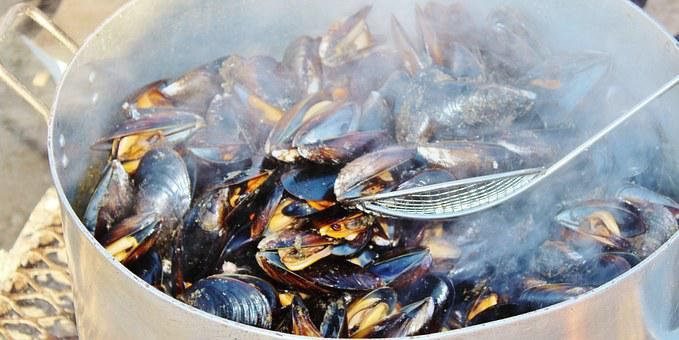 Mussels, Cook, Pot, Steam, Seafood, Meal, Delicious