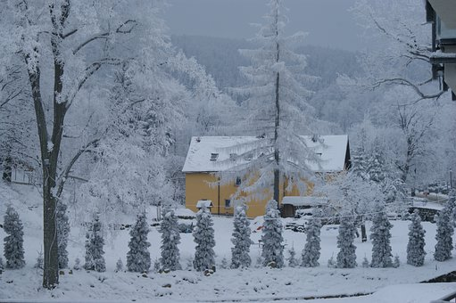 Swieradow Zdroj, Poland, Snow, Winter, Colours, Trees