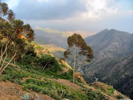 Eritrea, Mountains, Valley, Landscape, Forest, Trees