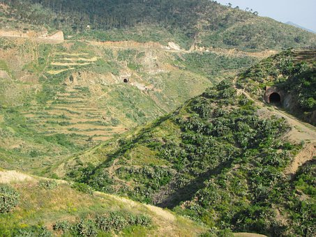 Eritrea, Landscape, Valley, Forest, Woods, Trees