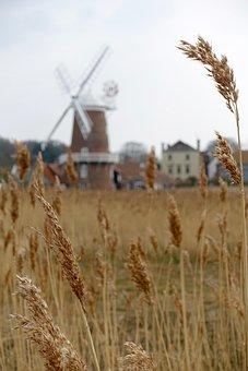Wheat, Stalks, Windmill, Farming, Straw, Wheat Field