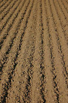 Arable, Furrow, Farmland Rut, Agriculture, Field
