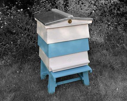Beehive, Wbc, Hive