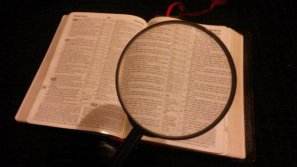 Magnifying Glass, Magnified, Magnifying, Magnify