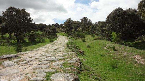 Calzada Romana, Landscape, Oaks