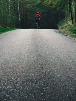 Cyling, Biking, Road, Forest, Nature, Woods, Cycle