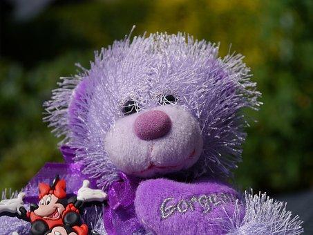 Teddy Bear, Purple, Bear, Toy, Teddy, Purple Teddy, Kid