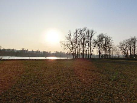Sunset, Field, Riverside, Trees, Back Light, Landscape