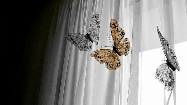 Decoration, Butterfly, Window, Nature, House, White