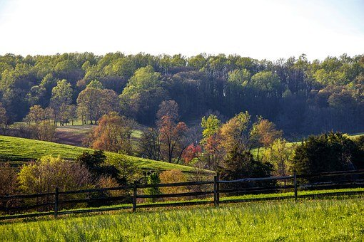 Virginia, Orange County, Farm, Landscape, Colorful