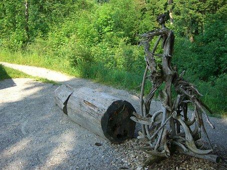 Tree Root, Gnarled, Root, Fig, Vielfuessler, Monster