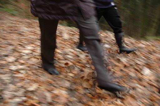 Movement, Run, Go, Walk, Autumn, Leaves, Fast, Hiking