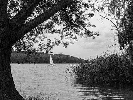 Boot, Lake, Water, Port, Sailing Boat, Background, Bank