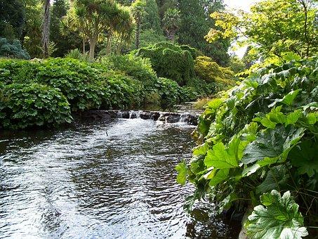 County Wicklow, Water, Glistening, River, Ireland