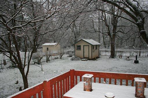 Winter, Backyard, Snowfall, Quiet, Dreary
